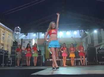 Miniatura zdjęcia: IV Wybory Miss Lubska 2010_DSCF4740.JPG